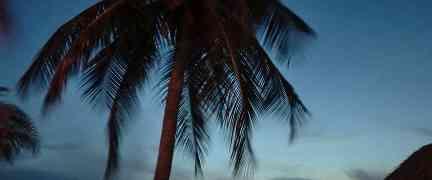 Curacao vakantie steeds populairder