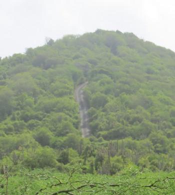Steile weg in het Christoffelpark