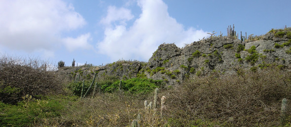 Kalksteenplateau op de Vlakte van Hato