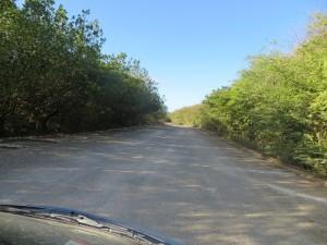 De weg naar Cas Abao Beach