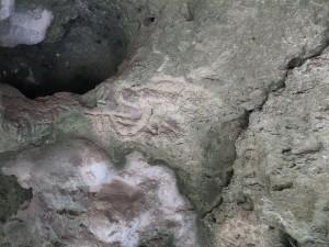 Rotstekeningen door indianen bij de Grotten van Hato.