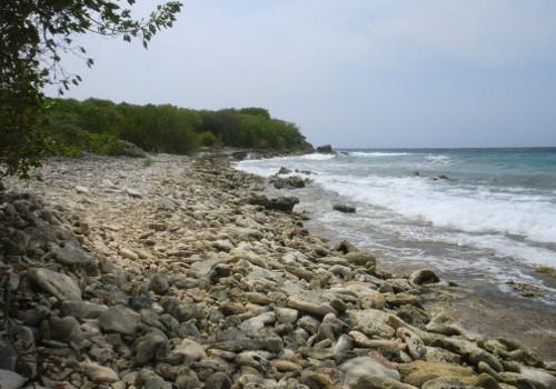 Rustig strandje bij het zoutmeer van Jan Thiel